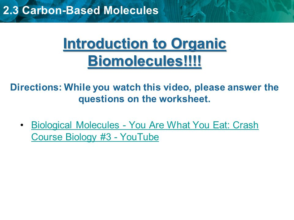 45 KEY CONCEPT Organic molecules are the foundation of life – Biomolecules Worksheet