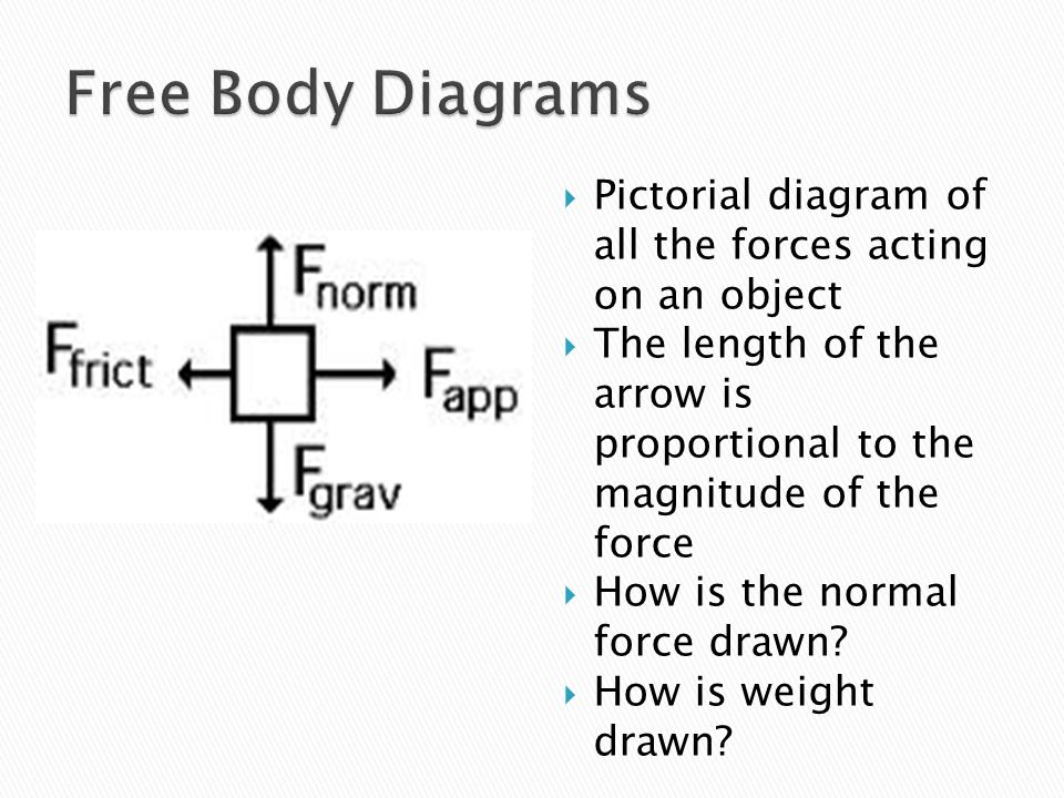 Free Body Diagrams Pictorial diagram of all the forces acting on an object. The length of the arrow is proportional to the magnitude of the force.