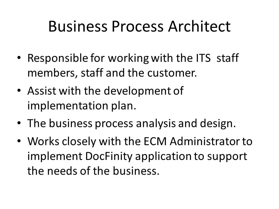 Business Process Architect