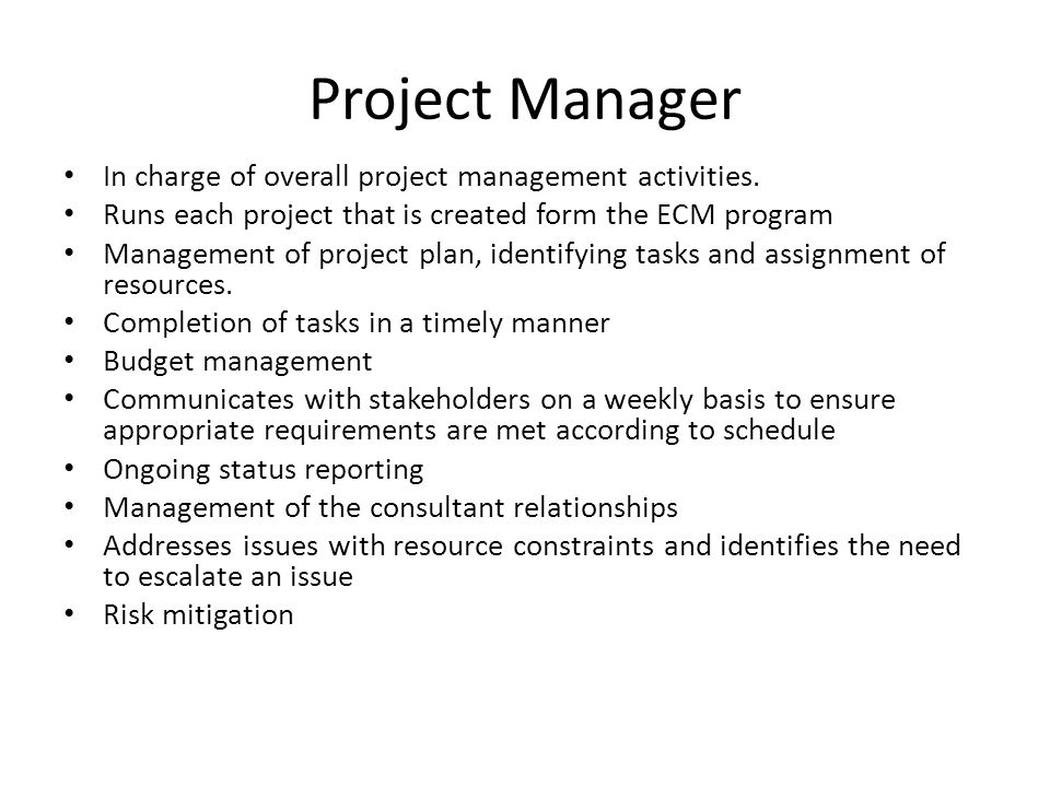 Project Manager In charge of overall project management activities.