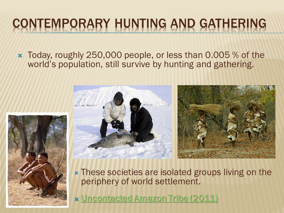 The economy of hunting and gathering societies essay
