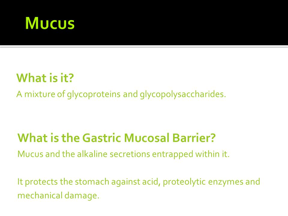 Mucus What is it What is the Gastric Mucosal Barrier