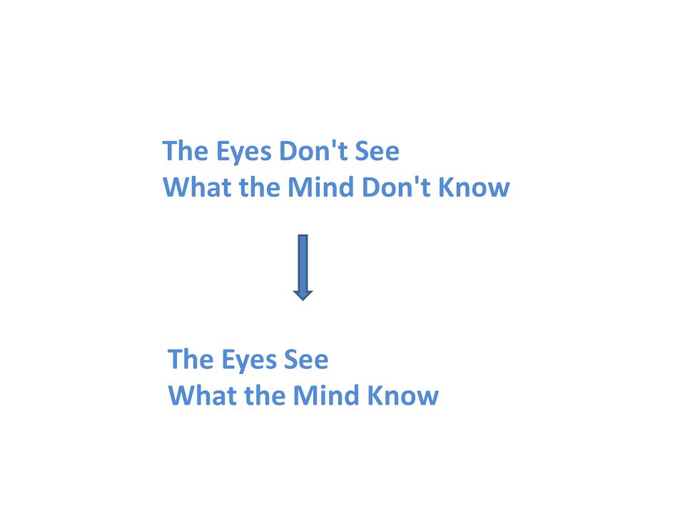 The Eyes Don't See What the Mind Don't Know ... - amazon.com