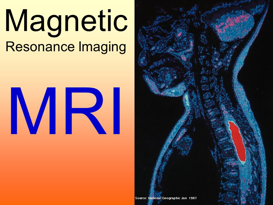 magnetic resonance imaging business The certificate in magnetic resonance imaging at south college is designed to create advancement opportunities for current school of business & technology.