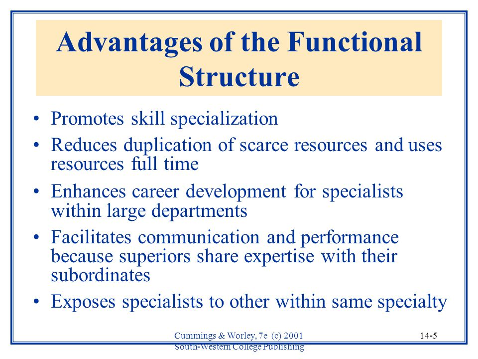 the advantage and disadvantage of a functional structure The functional organization structure is often used by companies that produce standard products because the focus is on the technical excellence and cost competitiveness of the company's products, as well as the importance of each functional component's contribution of expertise to the company's products.