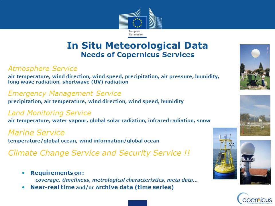 In Situ Meteorological Data Needs of Copernicus Services