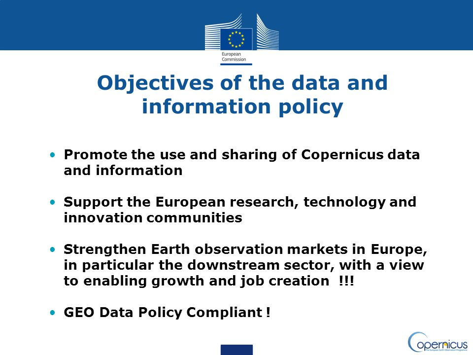 Objectives of the data and information policy