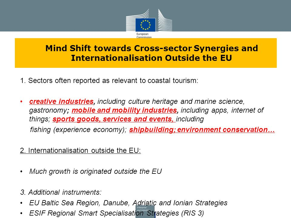 Mind Shift towards Cross-sector Synergies and Internationalisation Outside the EU