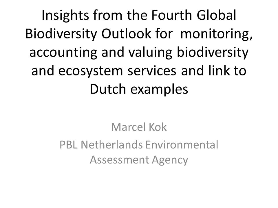 Marcel Kok PBL Netherlands Environmental Assessment Agency