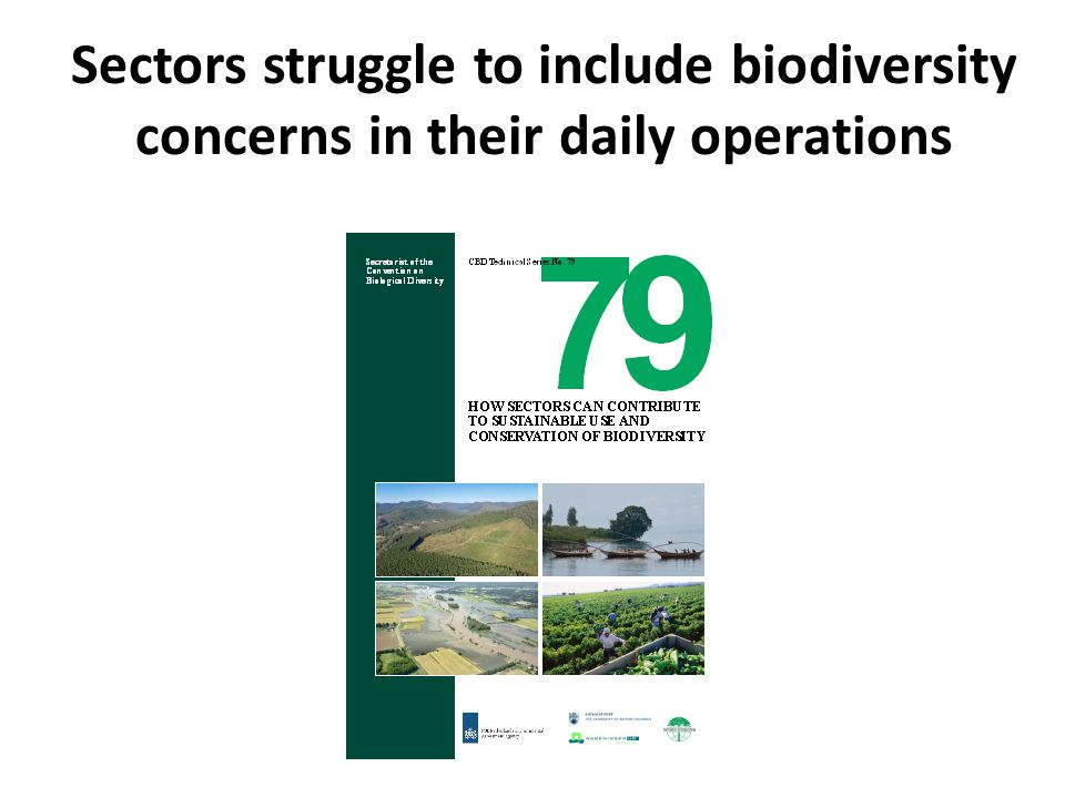Sectors struggle to include biodiversity concerns in their daily operations