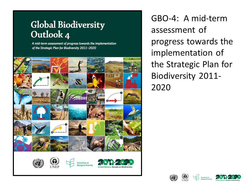 GBO-4: A mid-term assessment of progress towards the implementation of the Strategic Plan for Biodiversity