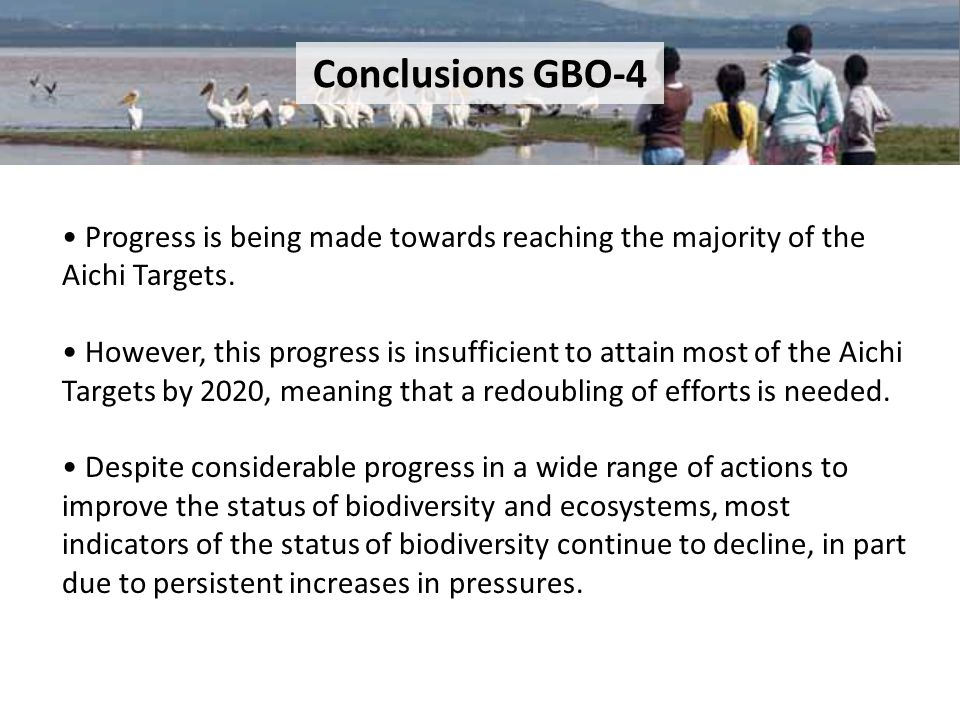 Conclusions GBO-4 • Progress is being made towards reaching the majority of the Aichi Targets.