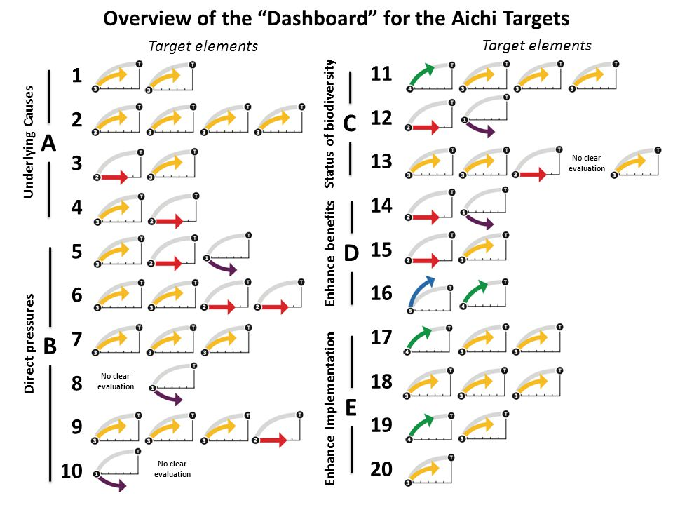 Overview of the Dashboard for the Aichi Targets