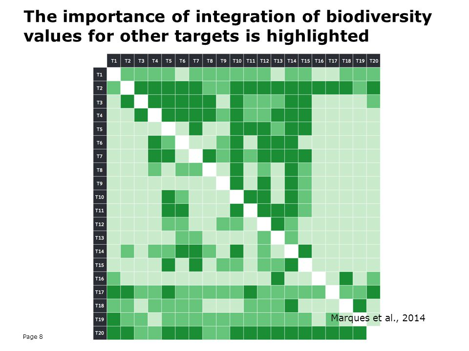 The importance of integration of biodiversity values for other targets is highlighted