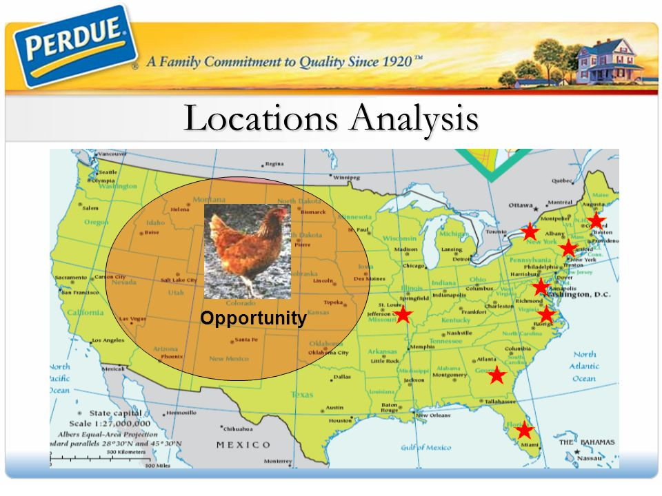 Locations Analysis Opportunity