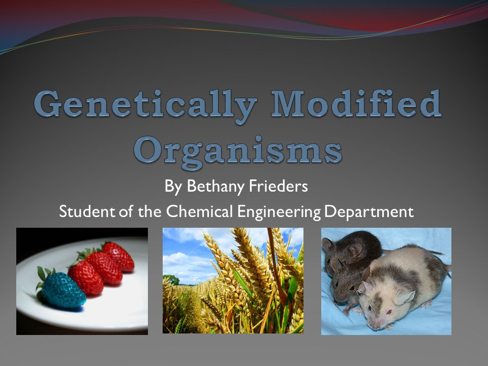 the benefits of genetically modified organisms Learn about the many benefits of gmos and how biotech helps farmers deal with the variety of challenges they face  these products are called genetically modified organisms, or gmos.