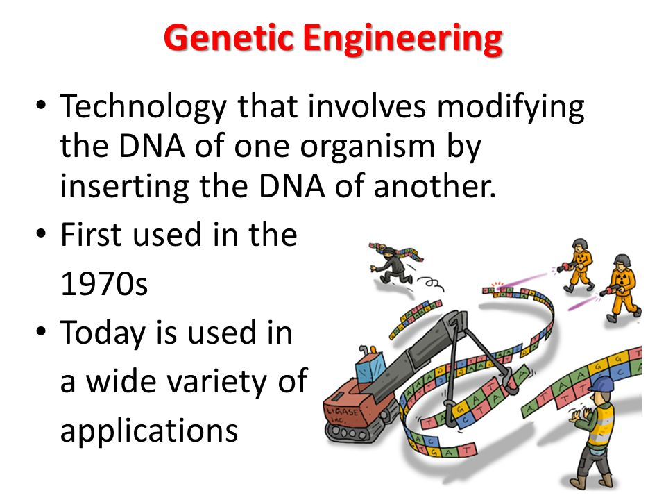 genetic engineering technology of the A technology known as a gene drive might be deployed to re-engineer species  and stop diseases like malaria but a scientific advisory panel.