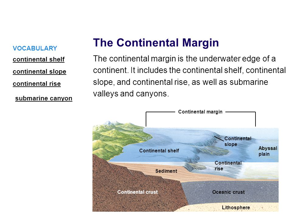 The Continental Margin