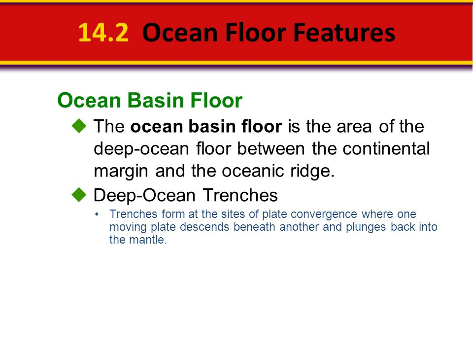 14.2 Ocean Floor Features Ocean Basin Floor