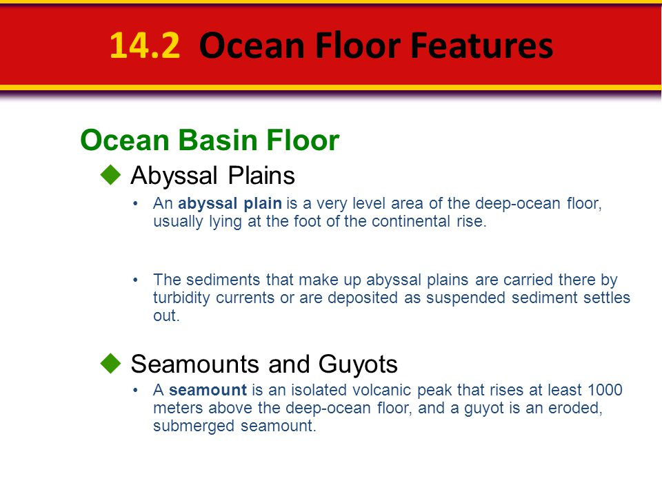 14.2 Ocean Floor Features Ocean Basin Floor  Abyssal Plains