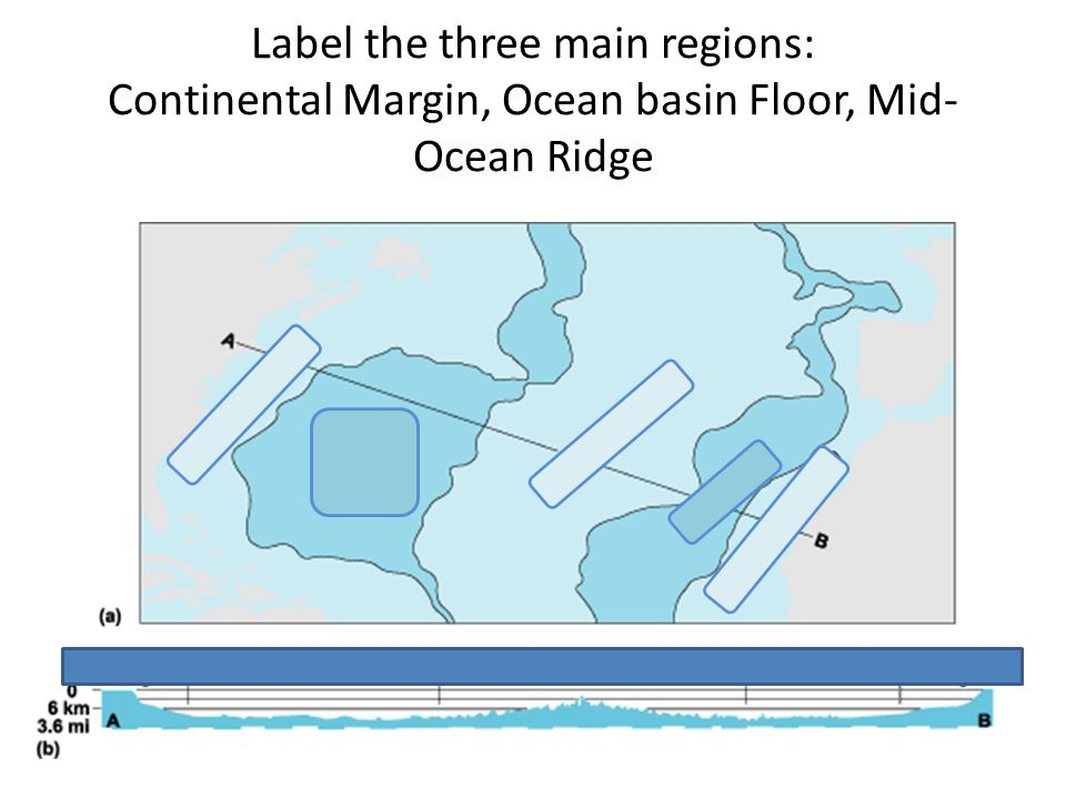 Label the three main regions: Continental Margin, Ocean basin Floor, Mid- Ocean Ridge