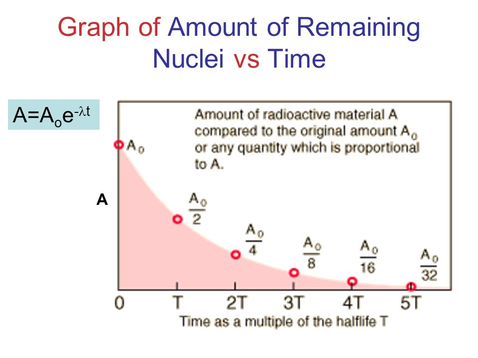Graph of Amount of Remaining Nuclei vs Time