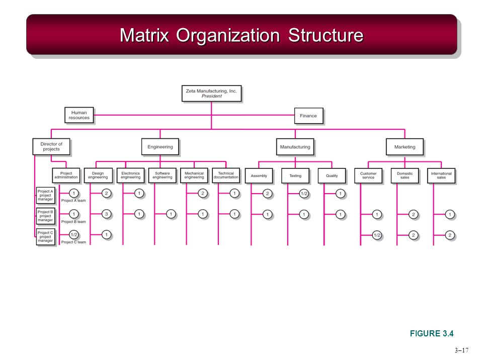 matrix organization In this guide we answer the question: what is matrix management we also describe the pros and consof the matrix management structure.