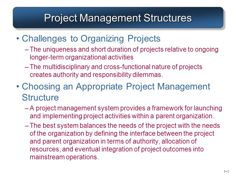 Project management within organisations