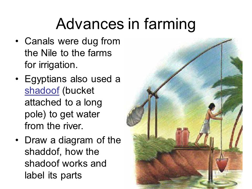 ch. 5 ancient egypt and kush 5000 bc – ad ppt download labelled diagram of a shaduf #1