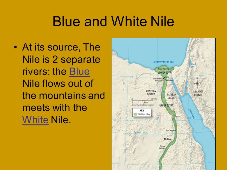 where the blue nile and white meet