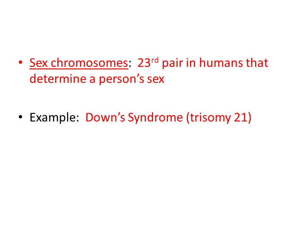 Sex chromosomes: 23rd pair in humans that determine a person's sex