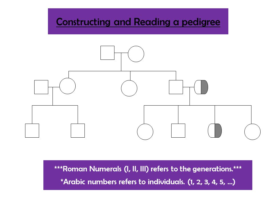 Constructing and Reading a pedigree