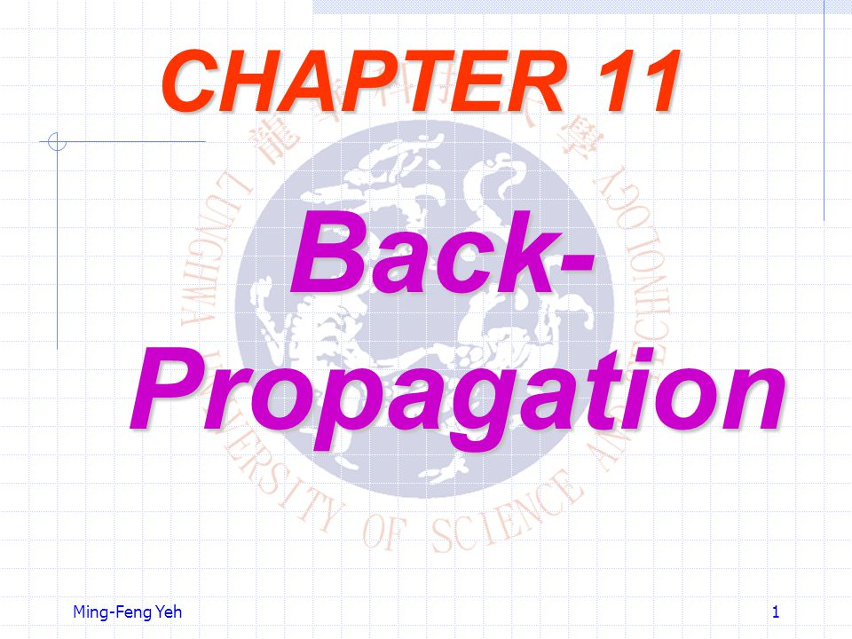 CHAPTER 11 Back-Propagation Ming-Feng Yeh
