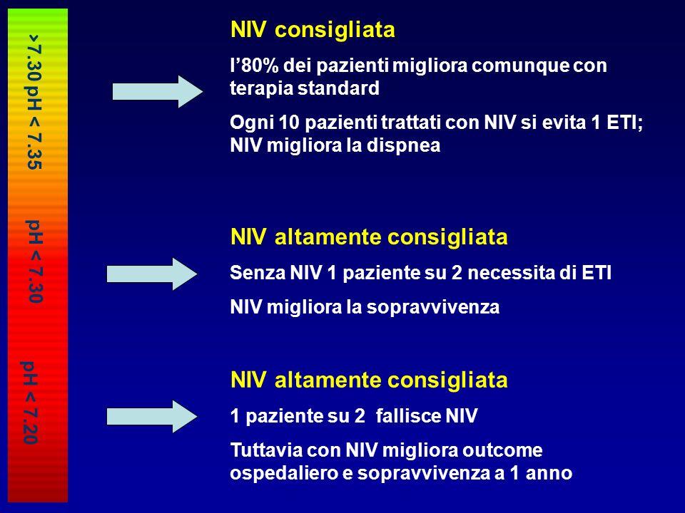 NIV altamente consigliata