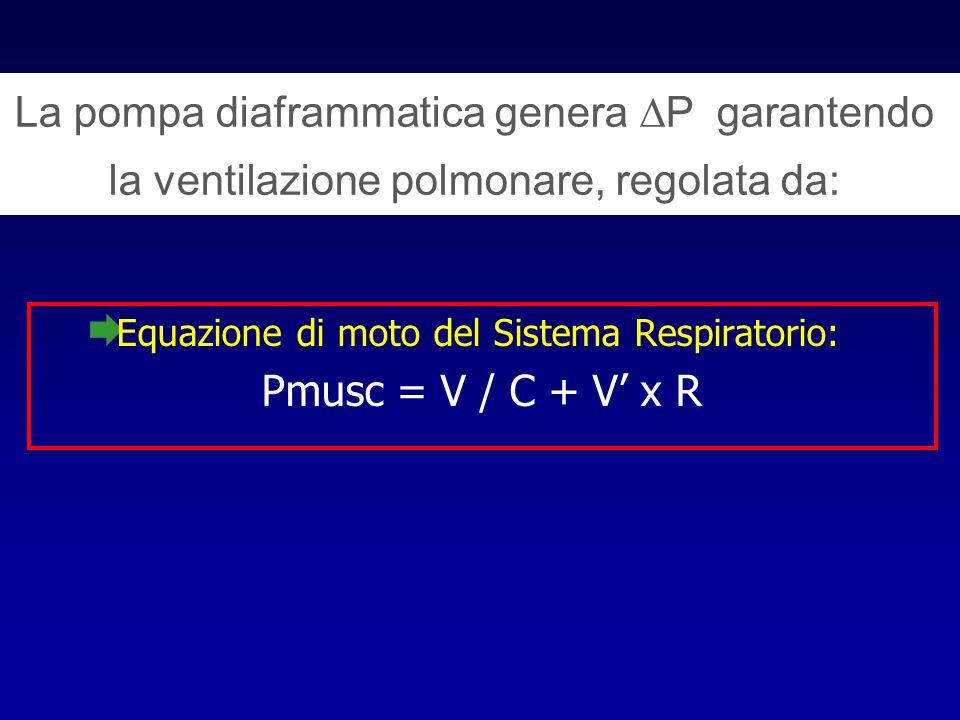 La pompa diaframmatica genera P garantendo la ventilazione polmonare, regolata da: