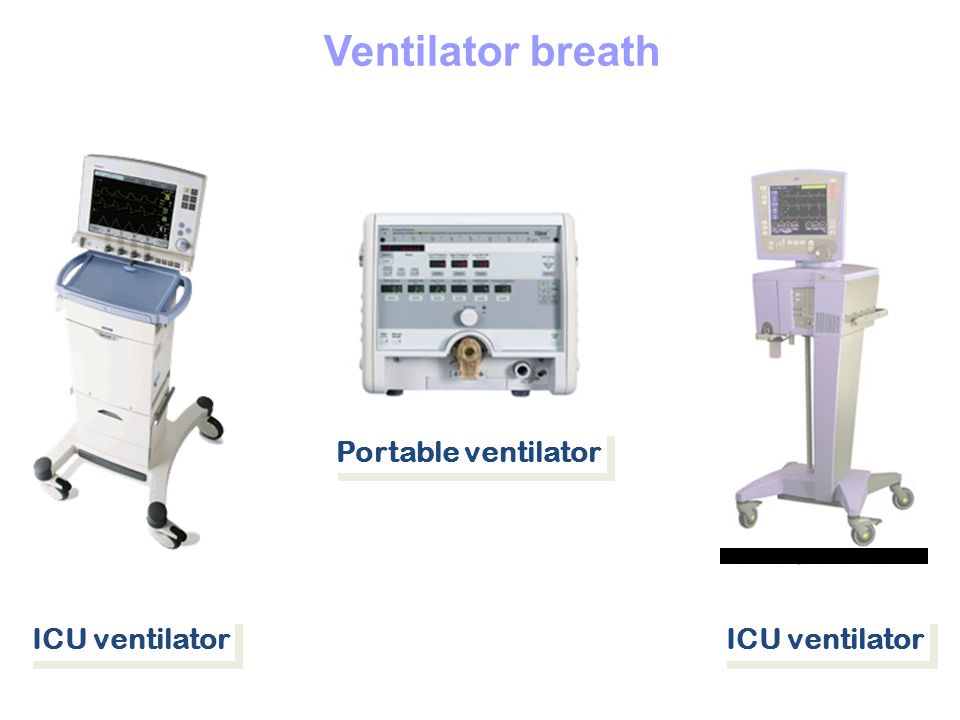 Ventilator breath Portable ventilator ICU ventilator ICU ventilator
