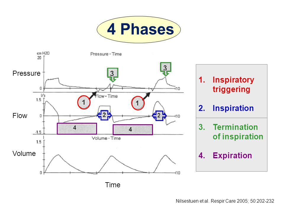 4 Phases Inspiratory triggering Inspiration Termination of inspiration