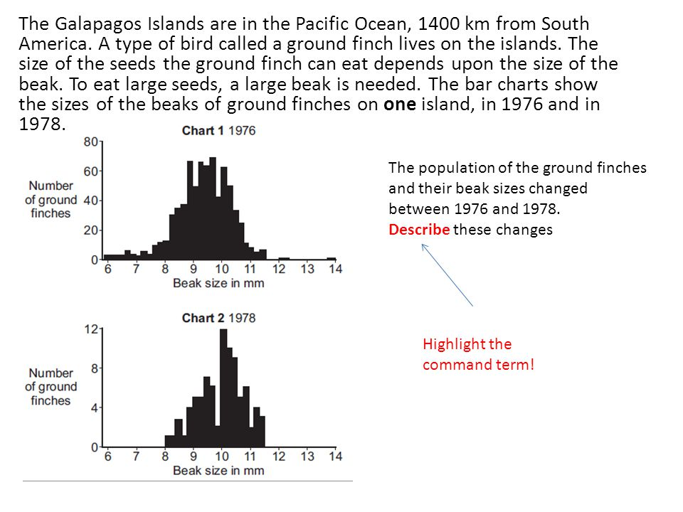 The Galapagos Islands are in the Pacific Ocean, 1400 km from South America. A type of bird called a ground finch lives on the islands. The size of the seeds the ground finch can eat depends upon the size of the beak. To eat large seeds, a large beak is needed. The bar charts show the sizes of the beaks of ground finches on one island, in 1976 and in 1978.