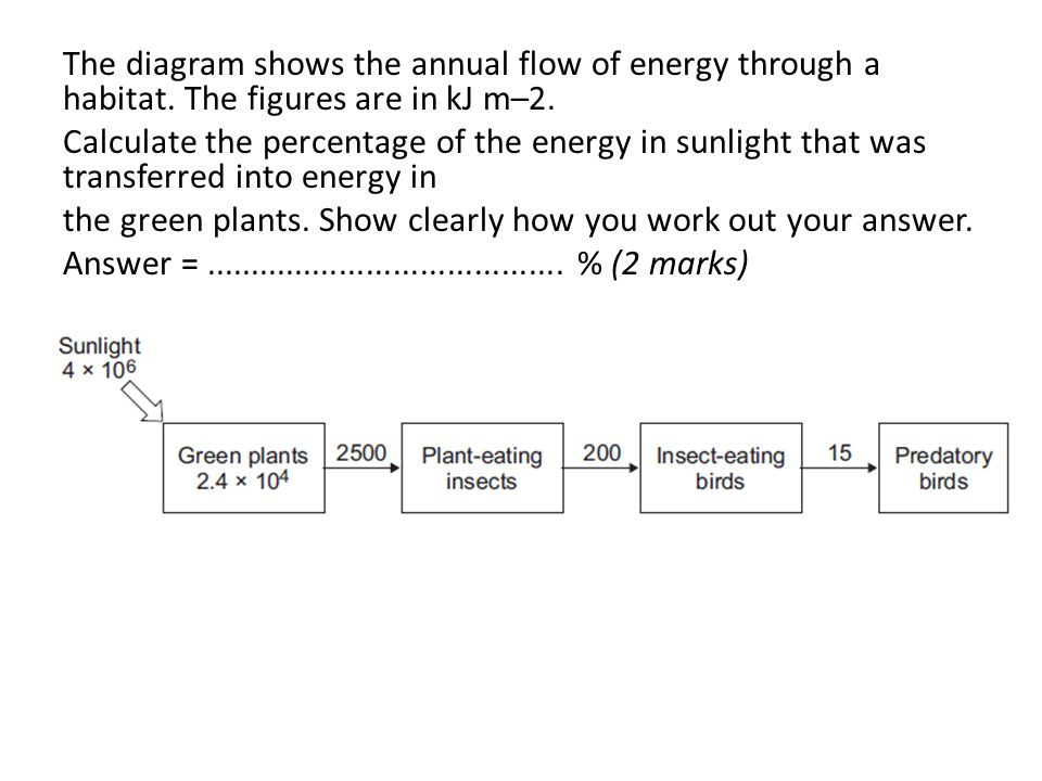 The diagram shows the annual flow of energy through a habitat