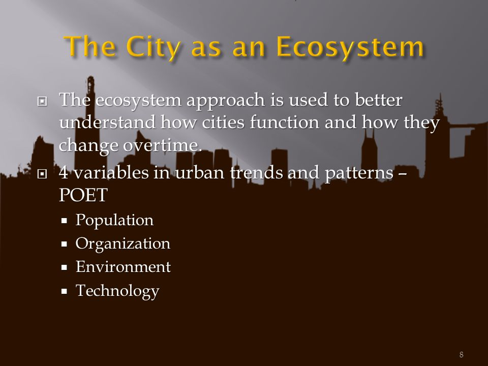 The City as an Ecosystem