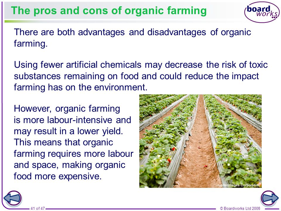 advantages and disadvantages of organic food environmental sciences essay Issue: what are the advantages and disadvantages of organic farming to the pacific community thesis statement: this essay will discuss the advantages and disadvantages of organic farming to.