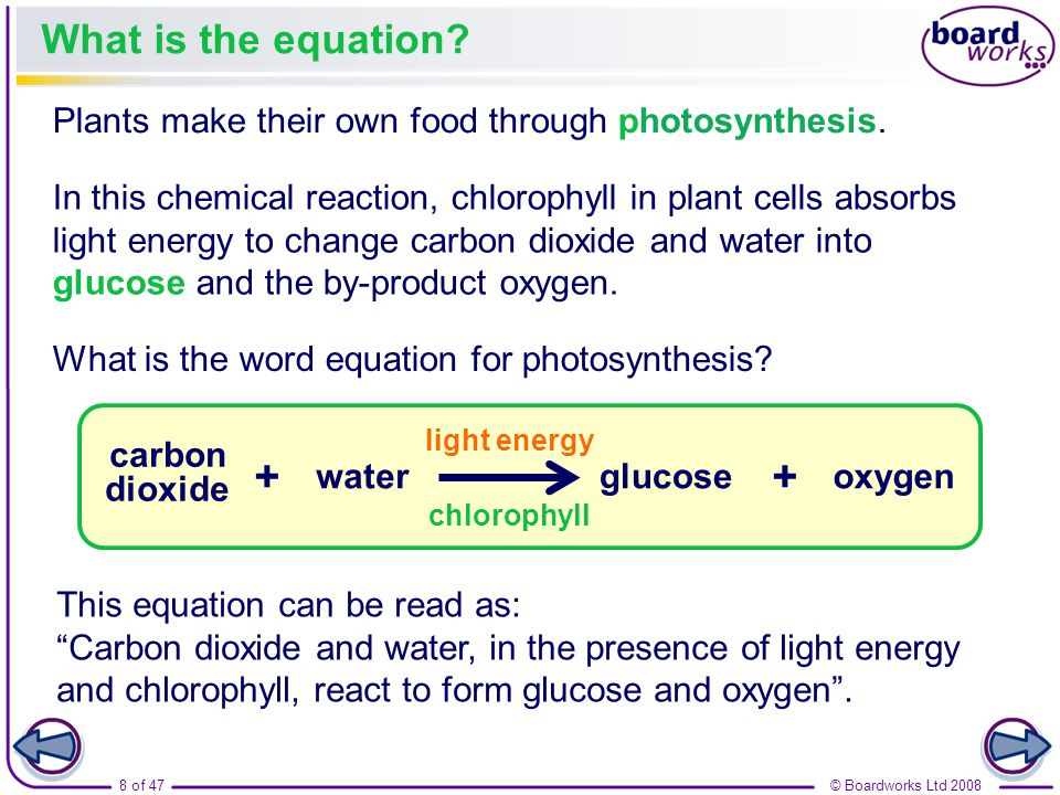 what is the equation for photosynthesis Photosynthesis is a very complex process it involves many different chemical reactions that occur in a pathway or series, that is, one chemical reaction produces what the next chemical reaction needs a chemical equation is written below which summarizes the reactants and products of the photosynthesis pathway.