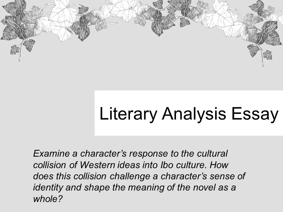 A literary analysis of the novel
