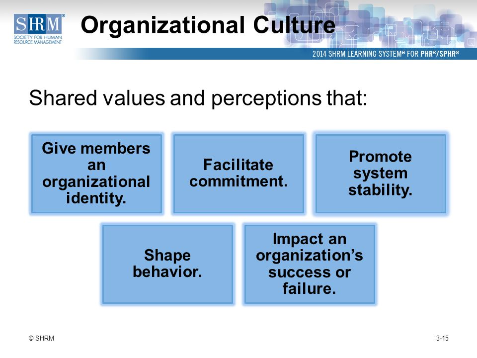 the impact of organisational culture on teams Existing studies focus on the impact of organizational culture on implementing interventions in order to combine organizational, team and patient data.