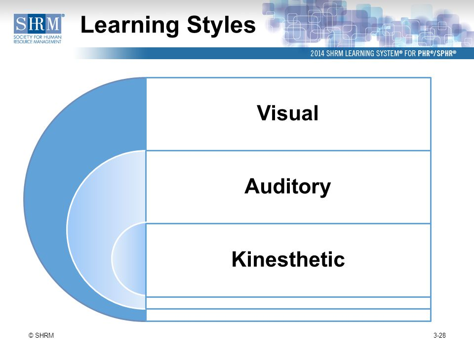 theory of adult learning styles,