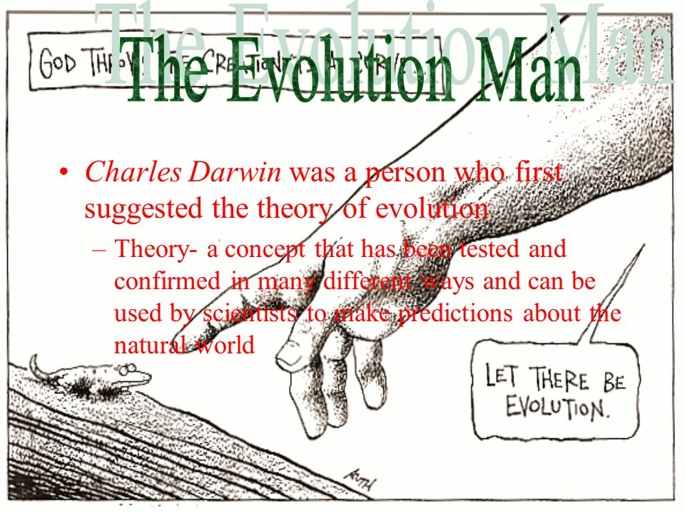a biography of charles darwin the creator of evolution theory Charles darwin became a christian on his deathbed and renounced evolution-unprovensummary of erumor: charles darwin, the author of the species by means of natural selection in 1859 and the champion of evolution, renounced his evolutionary theory and became a christian on his deathbed.