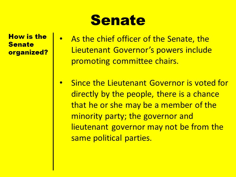 Senate How is the Senate organized As the chief officer of the Senate, the Lieutenant Governor's powers include promoting committee chairs.