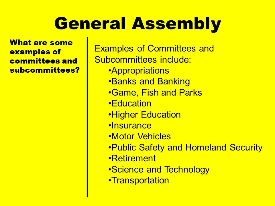 General Assembly Examples of Committees and Subcommittees include: