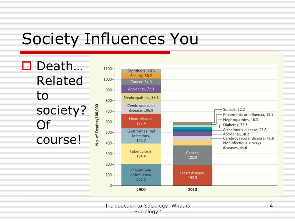 Society Influences You