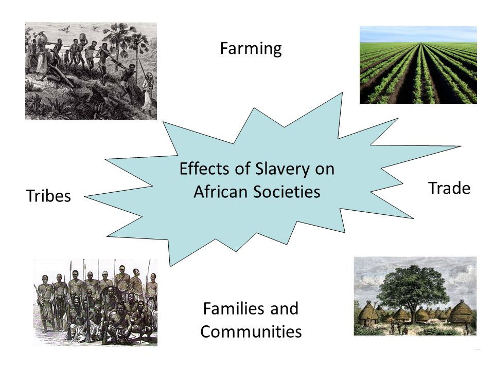 Consequences of the slave trade